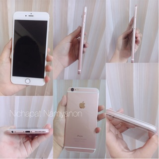 Review iPhone 6plus สี Rosegold