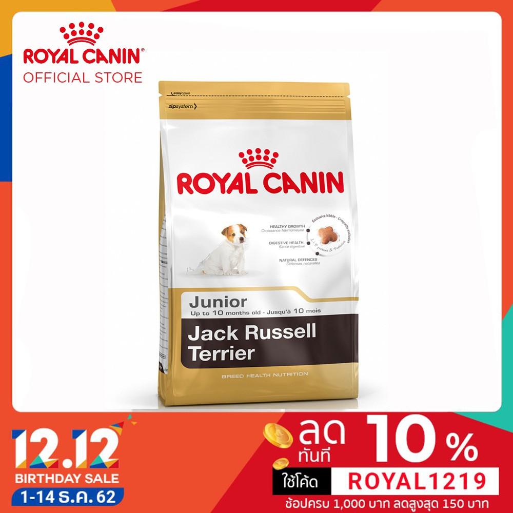 Royal Canin Jack Russel Junior อาหารลูกสุนัข พันธุ์แจ็ค รัสเซล อายุต่ำกว่า 10 เดือน 1.5 กิโลกรัม
