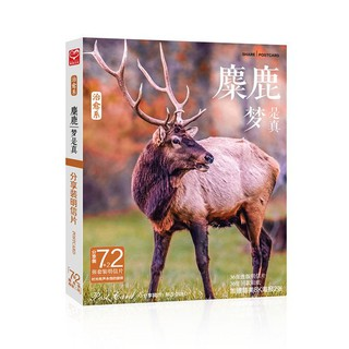 Free shipping 75 postcard stickers for healing beauty deer get 2 posters warm photography elk card