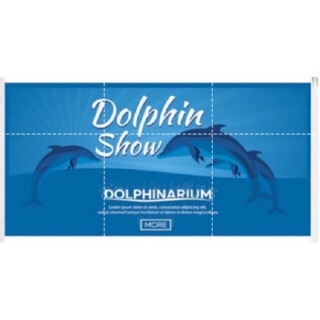 The best Dolphin Show In Asia