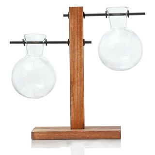 Review Hydroponic Display Bulb Vase In Flower Pots Plant Glass Container With Wooden St