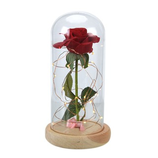 Image # 1 of Review Eternal Flower Red Silk Rose and LED Light with Fallen Petals in Glass Dome on a