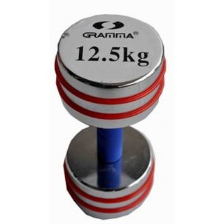 The best 8851918 120555 DUMBELL - IR 92021 12.5 KG.