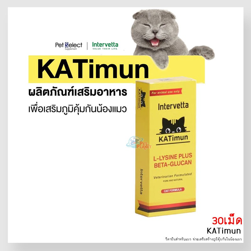 KATImun แคทติมูน L-Lysine Plus Beta-glucan 👩⚕️30เม็ด👩⚕️ วิตามินสำหรับแมว ช่วยเสริมสร้างภูมิคุ้มกันในน้องแมว