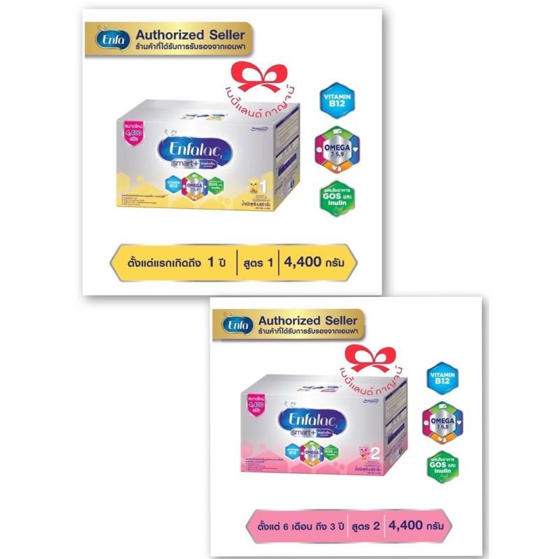 นมผง เอนชัวร์ นม นมผง Enfalac Smart สูตร1และสูตร 2 ( ขนาด 4.4 กก. ) บรรจุ 550 กรัม × 8 ถุง