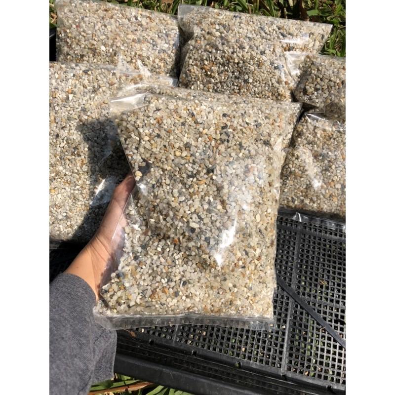 หินกรวดแม่น้ำใช้สำหรับโรยหน้ากระถางแคคตัส/ไม้อวบน้ำใช้ดีสุดๆไม่บาดผิวต้นไม้ถุงละ1.5 กิโลกรัม 20บาท สุดคุ้ม!!!!