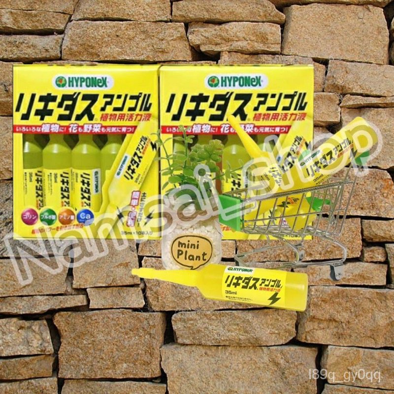 (Authentic) พร้อมส่ง ปุ๋ยปักหลอดสีเหลือง Hyponex ampoule ( แบบยกกล่อง) UPjC