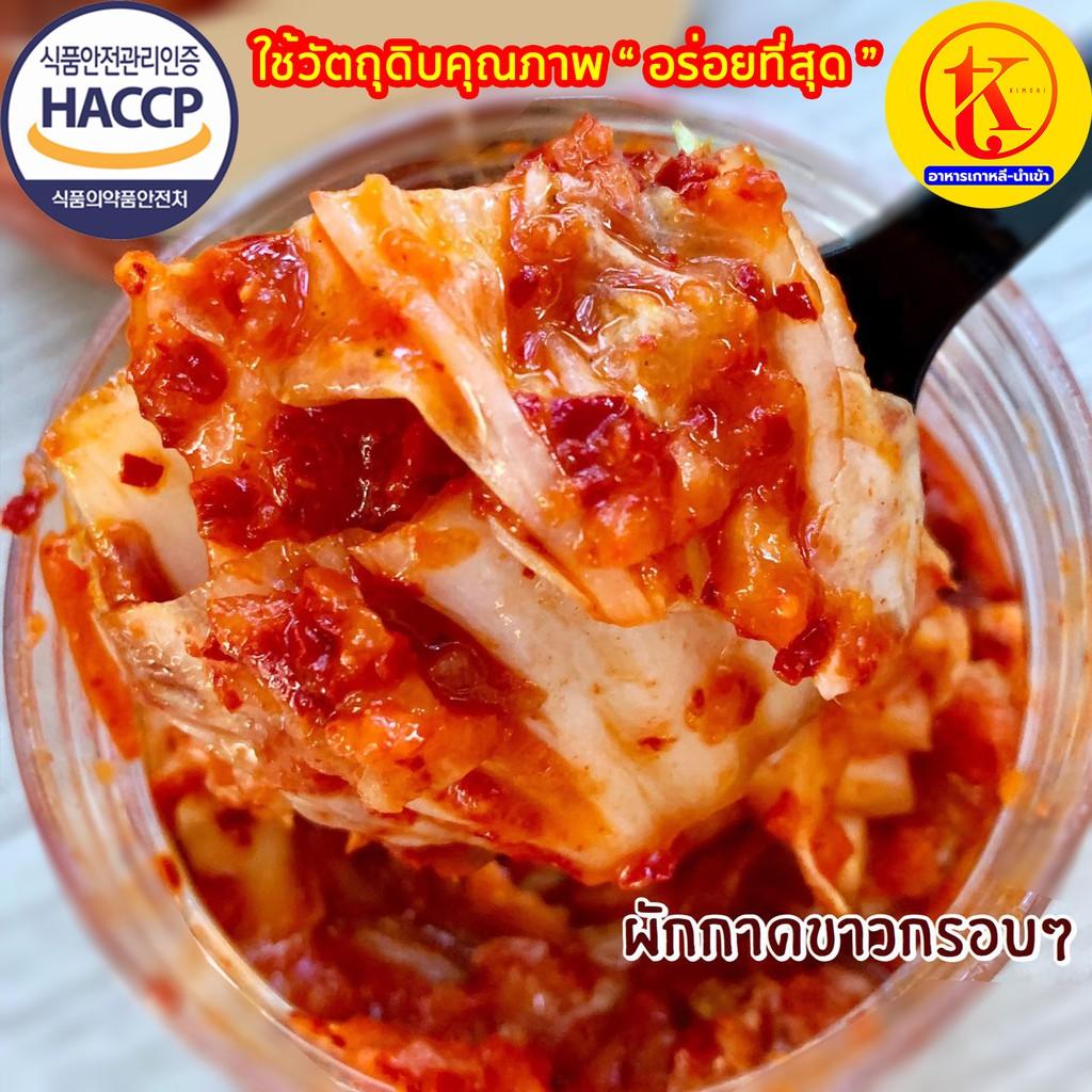 배추김치 ? กิมจิผักกาดขาว กิมจินำเข้า ? ถูกที่สุดในไทย ? by TKkimchi