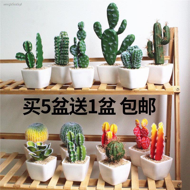 การจำลองพันธุ์ไม้อวบน้ำ☁☜>จำลองแบบนอร์ดิกกระถางแคคตัสปลอมในร่มแคคตัสพืชสีเขียวตกแต่งดอกไม้ปลอมเดสก์ท็อปบอนไซเครื่องประดั