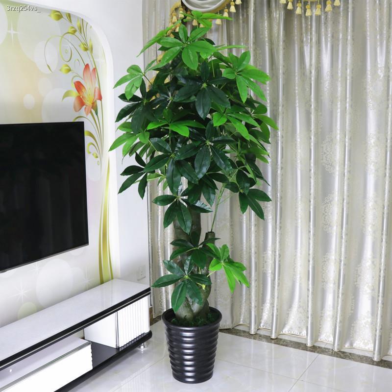 การจำลองพันธุ์ไม้อวบน้ำ▫♣> ต้นไม้ปลอม, ต้นไม้จำลองโชคลาภ, ไม้กระถางบนพื้น, บอนไซห้องนั่งเล่นขนาดใหญ่, ดอกไม้ปลอม, ตกแต่ง