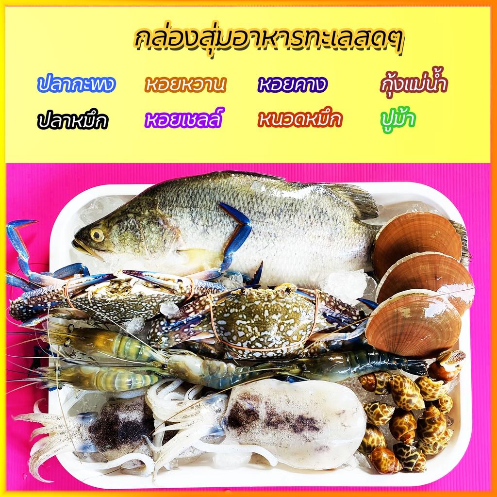กล่องสุ่มอาหารทะเลคัดเกรด สดๆ แน่นๆ ไซส์ (S)