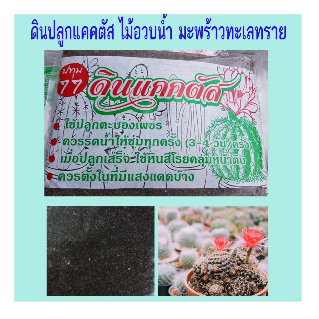 ดินปลูกแคคตัส ดินปลูกกระบองเพชร ดินกระบองเพชร ไม้อวบน้ำมะพร้าวทะเลทราย 1 kg