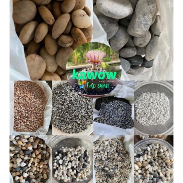 หินตกแต่งกระถางต้นไม้ 420 กรัม | กระบองเพชร ไม้อวบน้ำ