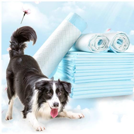Boqi factory แผ่นรองฉี่ Cocoyo แผ่นรองฉี่แมว แผ่นรองฉี่สุนัข ช่วยฝึกขับถ่าย ระงับกลิ่น ซึมซับไดีดี ยิ่งขึ้น Cocoyo