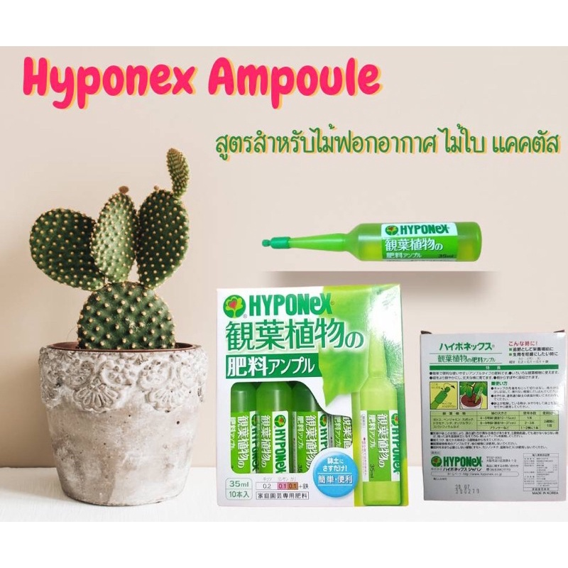 Hyponex ampoule สีเขียวอ่อน ( แบบยกกล่อง)