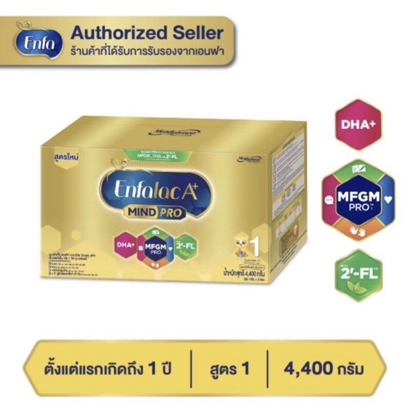 รถบังคับชุดเด็กทิชชู่เปียกนมขวดนม❅◕[ขายยกลัง-2กล่อง] ใหม่ นมผงEnfalacA+1 เอนฟาแล็ค เอพลัส มายด์โปร ดีเอชเอ พลัส สูตร 1 4