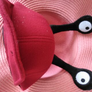 (เก็บปลายทาง)หมวกแฟชั่นเด็กมะนาวต่างดุ๊ด