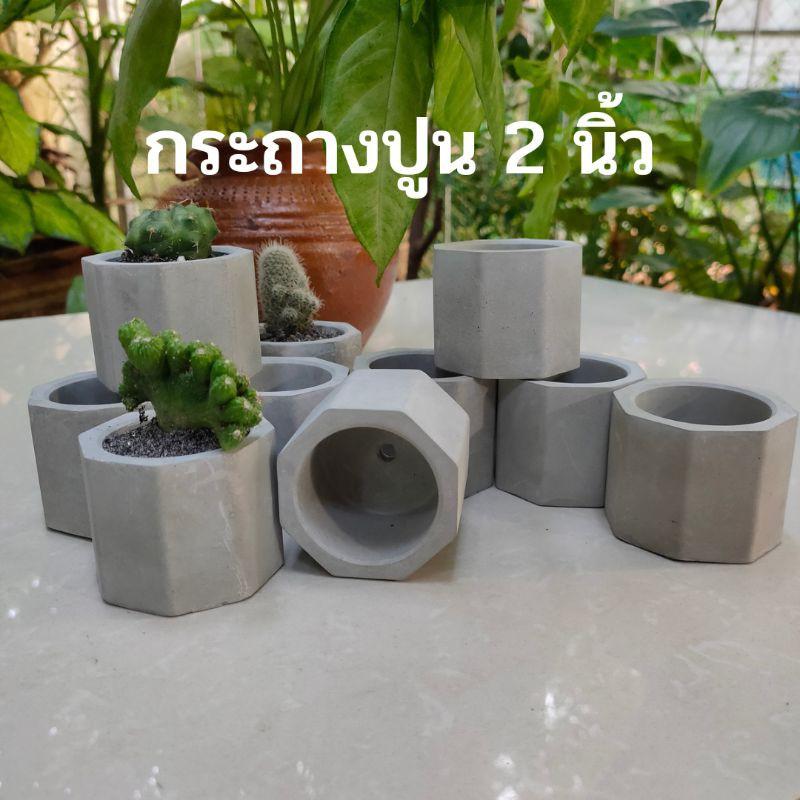 กระถางปูนเปลือย🌵กระถางแคสตัส🏜️กระถางไม้อวบน้ำ กระถางเล็ก (10แถม1)