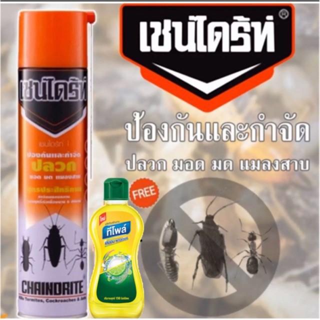 เชนไดร์ท์ สเปรย์กำจัดปลวก มอด มดและแมลงสาบ 450มล. แถม!น้ำยาล้างจาน 1 ขวด