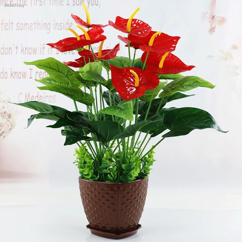 การจำลองพันธุ์ไม้อวบน้ำ✙✹แพ็คโพสต์ จำลองพืชสีเขียว หน้าวัว ดอกไม้ปลอม ตกแต่งห้องนั่งเล่น พืชสีเขียว พื้น ไม้กระถาง เครื่