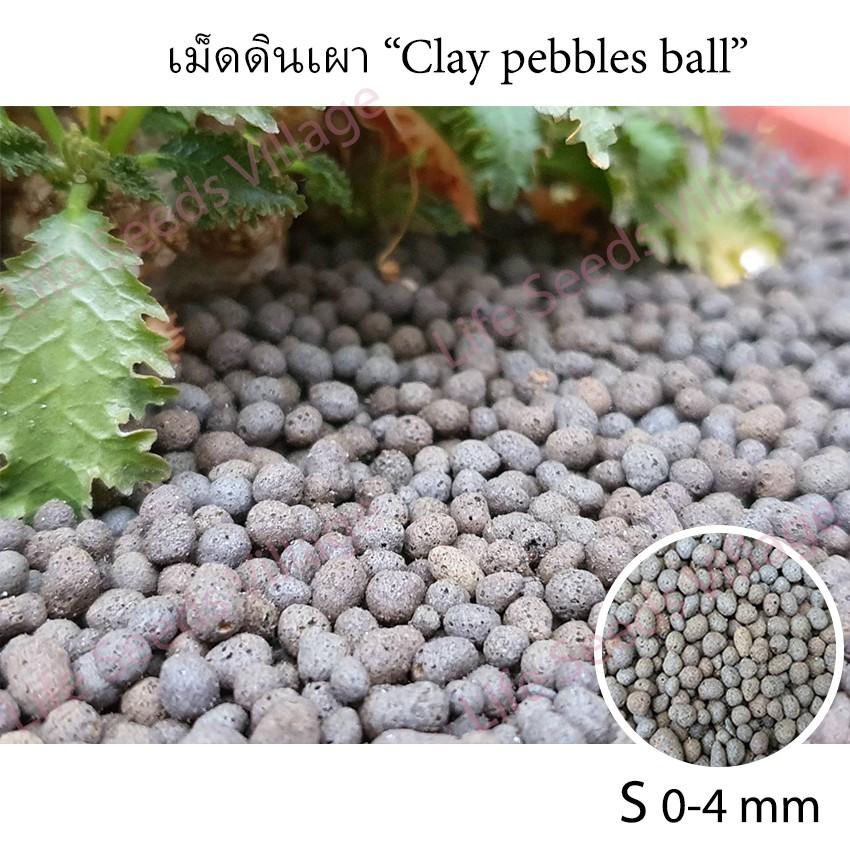 เม็ดดินเผา (Clay pebbles ball) เม็ดกลม สำหรับโรยหน้าดิน ไม้แคคตัส กระบองเพชร ไม้อวบน้ำ