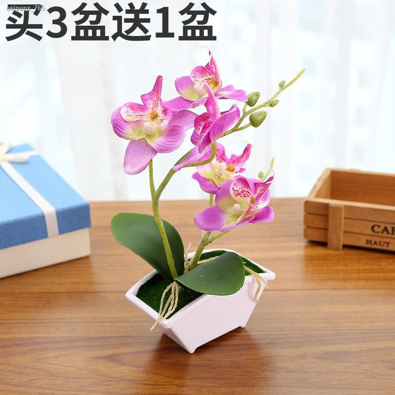 การจำลองพันธุ์ไม้อวบน้ำ✉✹>ดอกไม้ประดิษฐ์กระถางเล็กคู่ -forked phalaenopsis ดอกไม้ปลอม bonsai หน้าแรกตกแต่งเดสก์ท็อปจำลอง