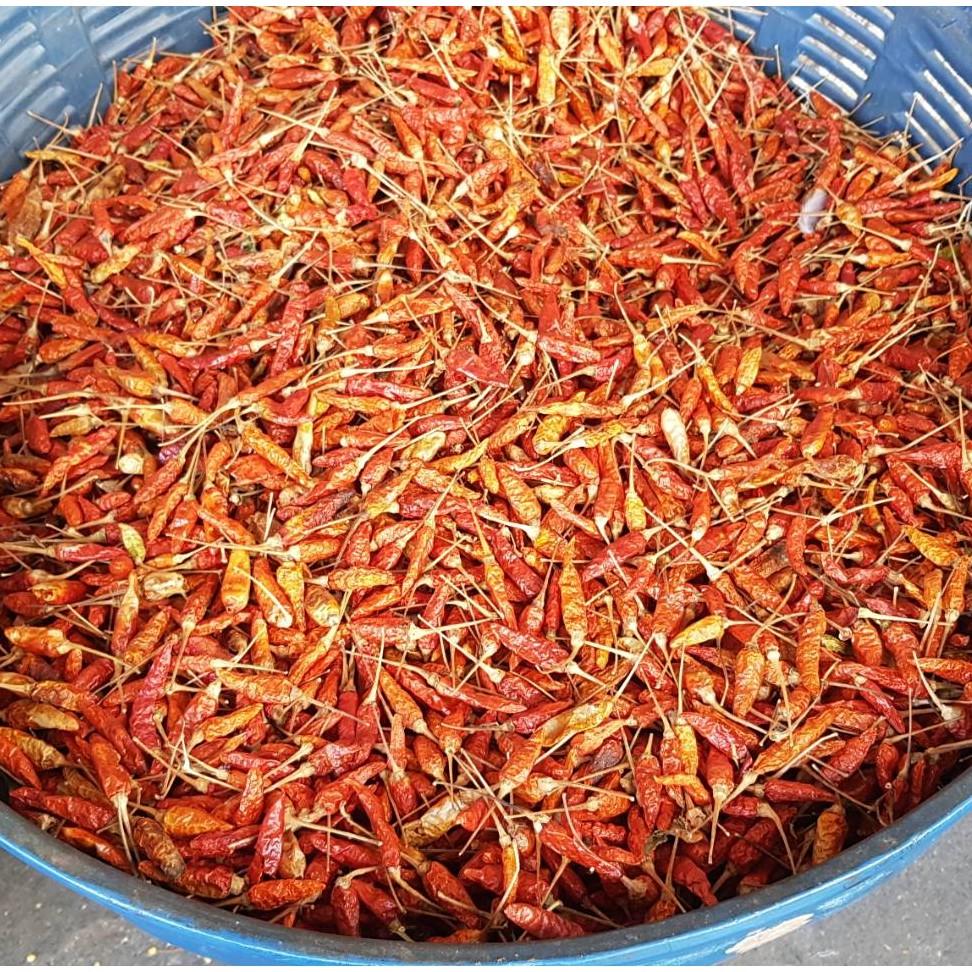 พริกแต้ดอย พริกแห้งเมือง พริกแห้ง จาก เชียงใหม่ เหมาะ ทำอาหาร และ ทำพริกป่น เผ็ด เผ็ด