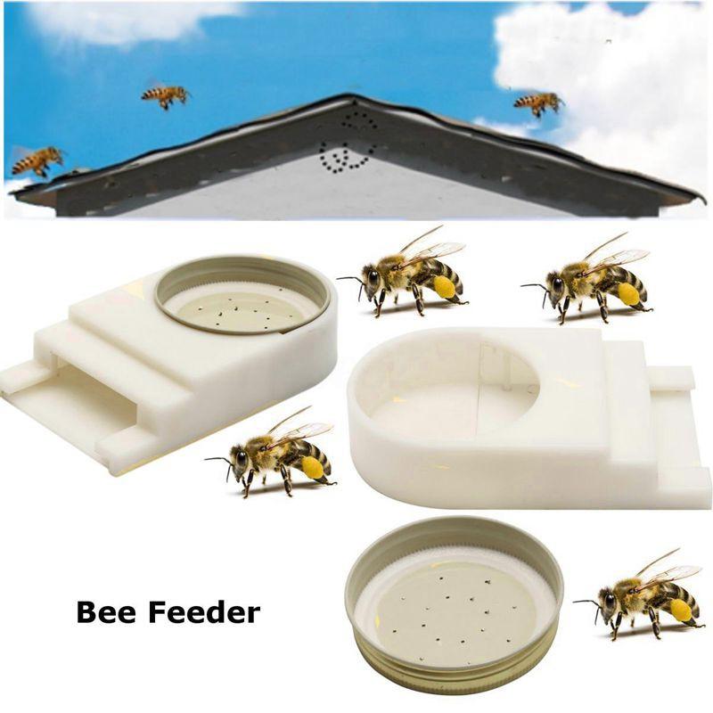 Honey Bee Keepers Beekeeping Beehive Entrance Feeder Water Feeder Tool Equip