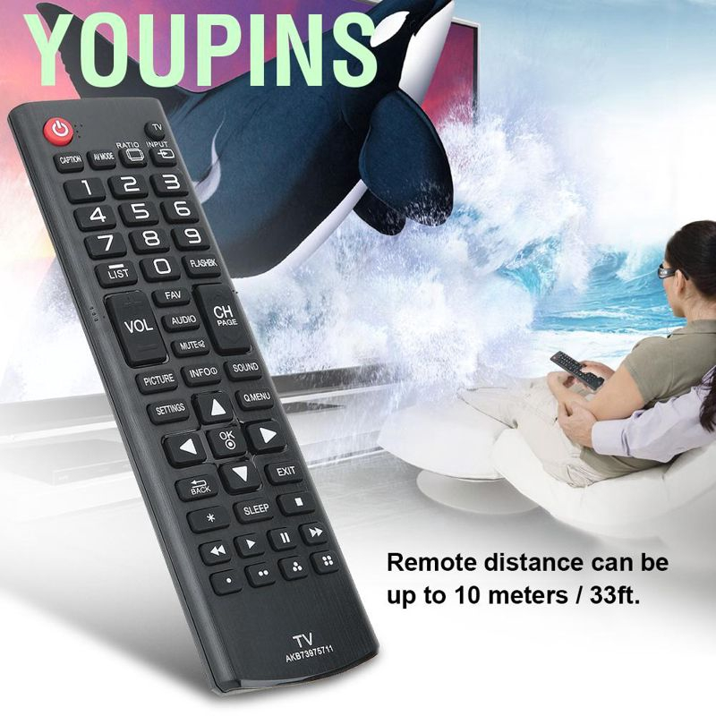 youpins