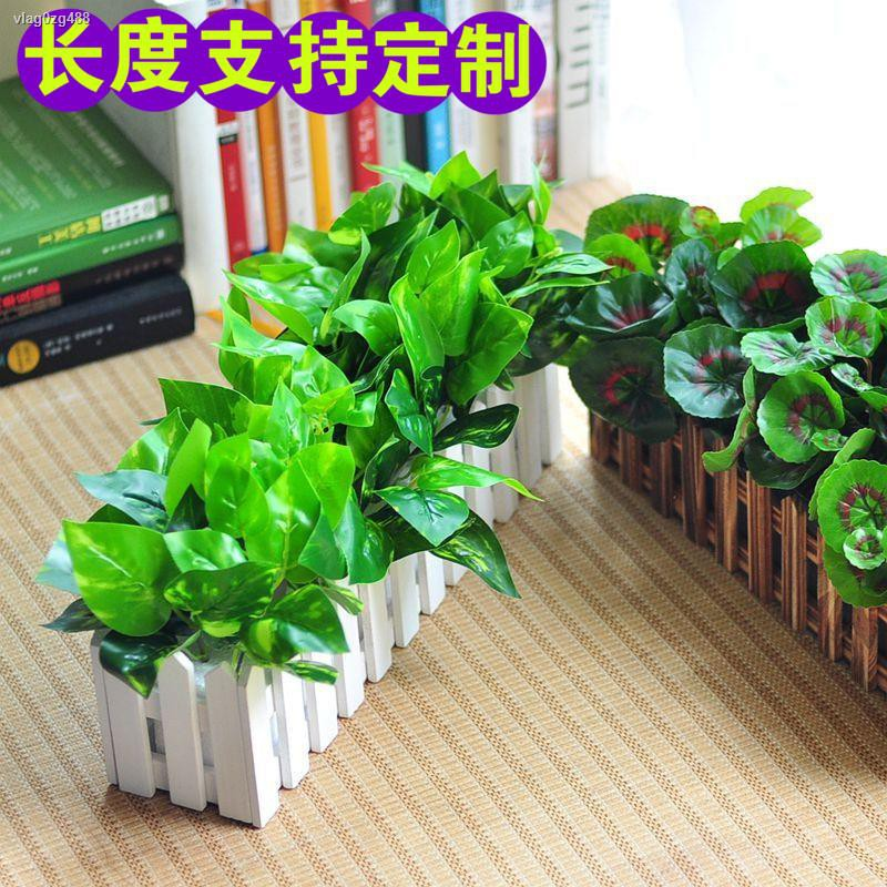 การจำลองพันธุ์ไม้อวบน้ำ┋¤✥>เลียนแบบต้นไม้ปลอมสีเขียว ดอกไม้ปลอม รั้วตกแต่งในร่มและกลางแจ้ง ไม้กระถางงัวเขียว , ชุดดอกไม้