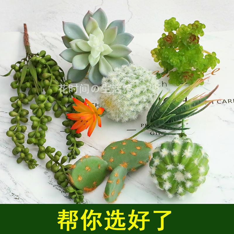 ≞ゅไม้อวบน้ำจำลองสไตล์นอร์ดิก INS ดอกไม้ปลอมสดขนาดเล็กพืชสีเขียวอุปกรณ์ถ่ายภาพอุปกรณ์ตกแต่งบ้าน