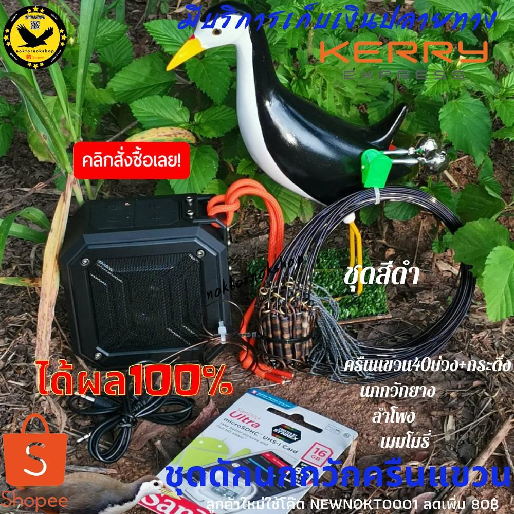 ครืนดักนกกวัก ชุดดักนกกวัก ชุดต่อนกกวัก ชุดบ่วงแขวนดักนกกวัก [40บ่วง+กระดิ่ง] สีเขียว สีน้ำตาล สีดำ ใช้งานง่าย ได้ผล100%