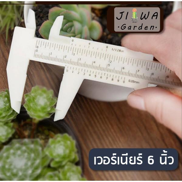 (J009) เวอร์เนียร์ พลาสติก ขนาด 6 นิ้ว 150มม. Vernier caliper สำหรับวัดต้นไม้จิ๋ว วัดแคคตัส ไม้อวบน้ำ
