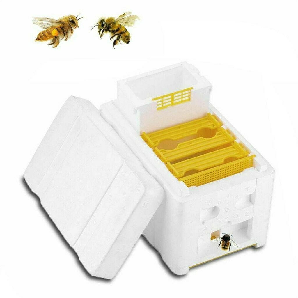 HONEYBEE PROFESSIONAL BEE ESCAPE