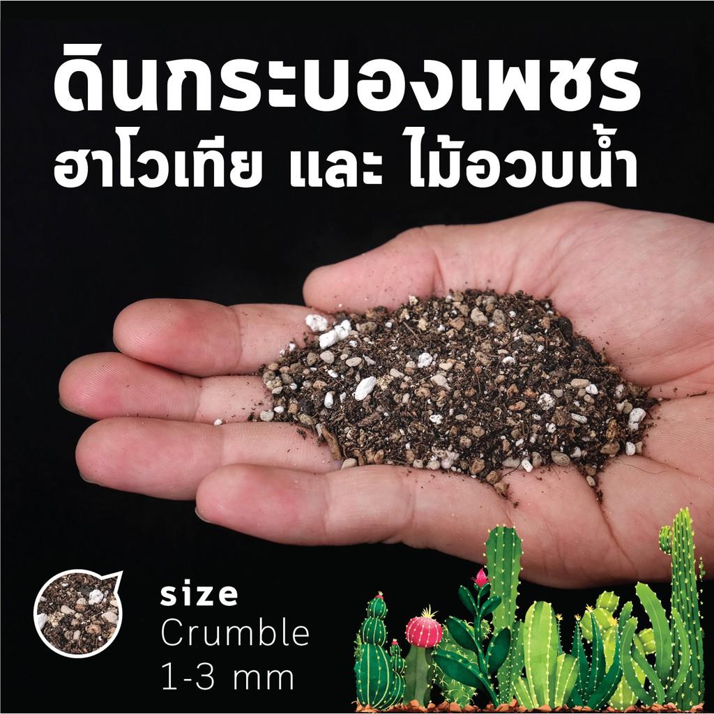 ดินกระบองเพชร ดินเเคคตัส ดินไม้อวบน้ำ ผสมพร้อมปลูก by miNATURE_c