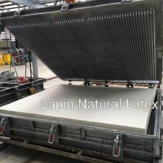 ส่งฟรี!! Lapin Topper หนา 2นิ้ว ที่นอนยางพาราแท้ เกรดพรีเมี่ยม (3.5ฟุต / 5ฟุต/ 6ฟุต)