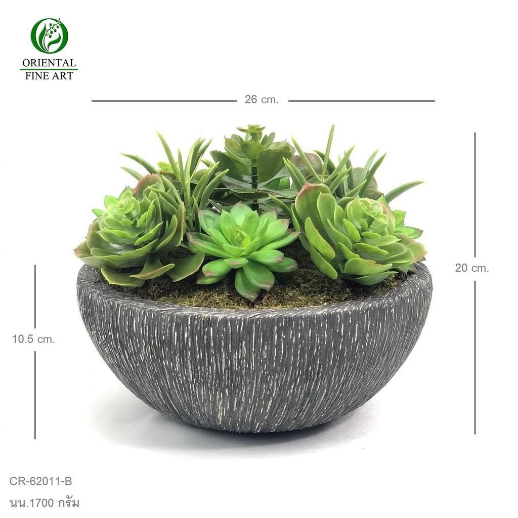 พืชอวบน้ำ ไม้อิ่มน้ำ แคคตัสประดิษฐ์ กุหลาบหินปลอม Echevaria จัดในกระถางดินเผา สวยเหมือนของจริง