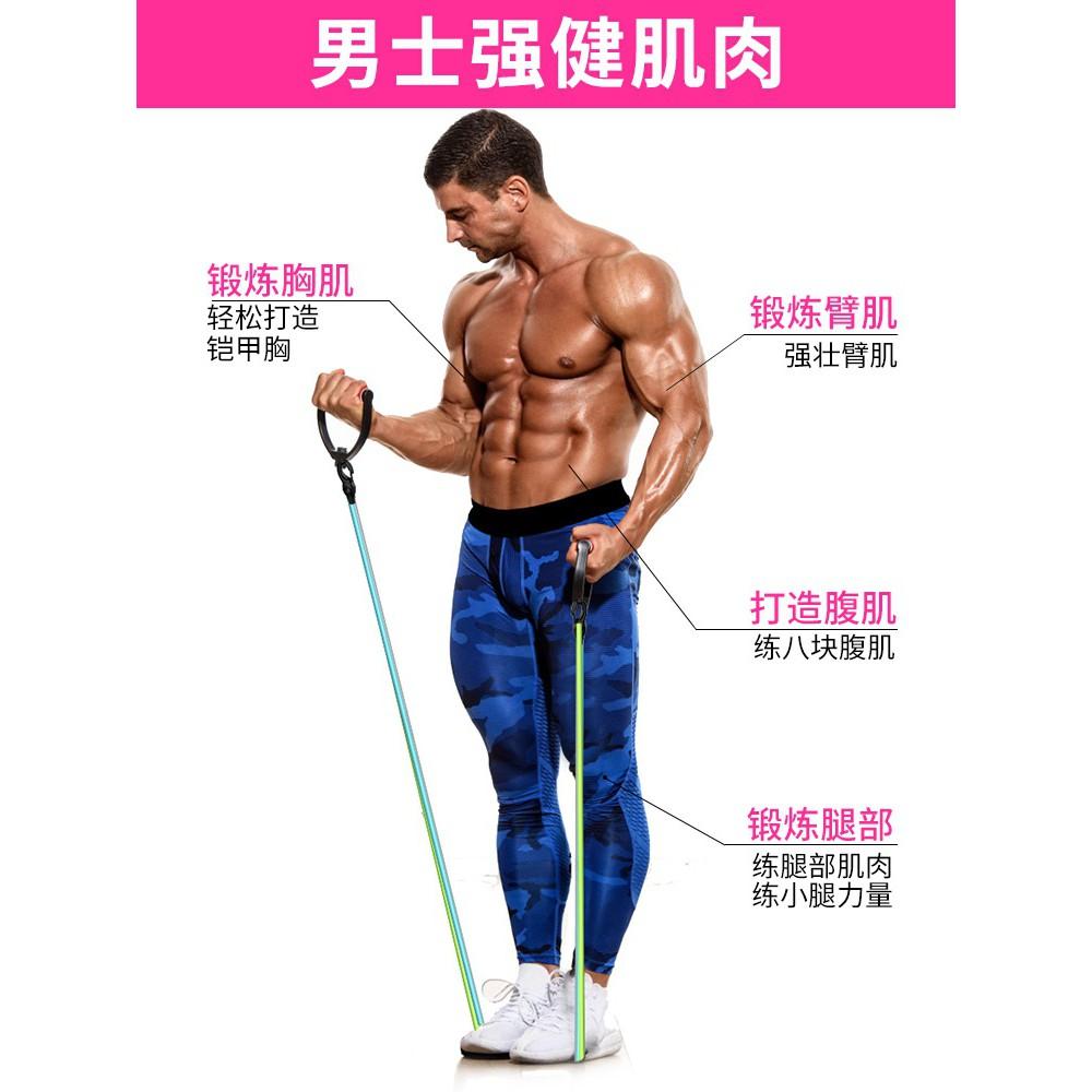 ♈♝เชือกดึงระดับไฮเอนด์] อุปกรณ์ออกกำลังกายหญิง หน้าแรก ชาย การฝึกความแข็งแรง ความต้านทาน น้ำยาง แถบยางยืด ตัวปรับความตึง
