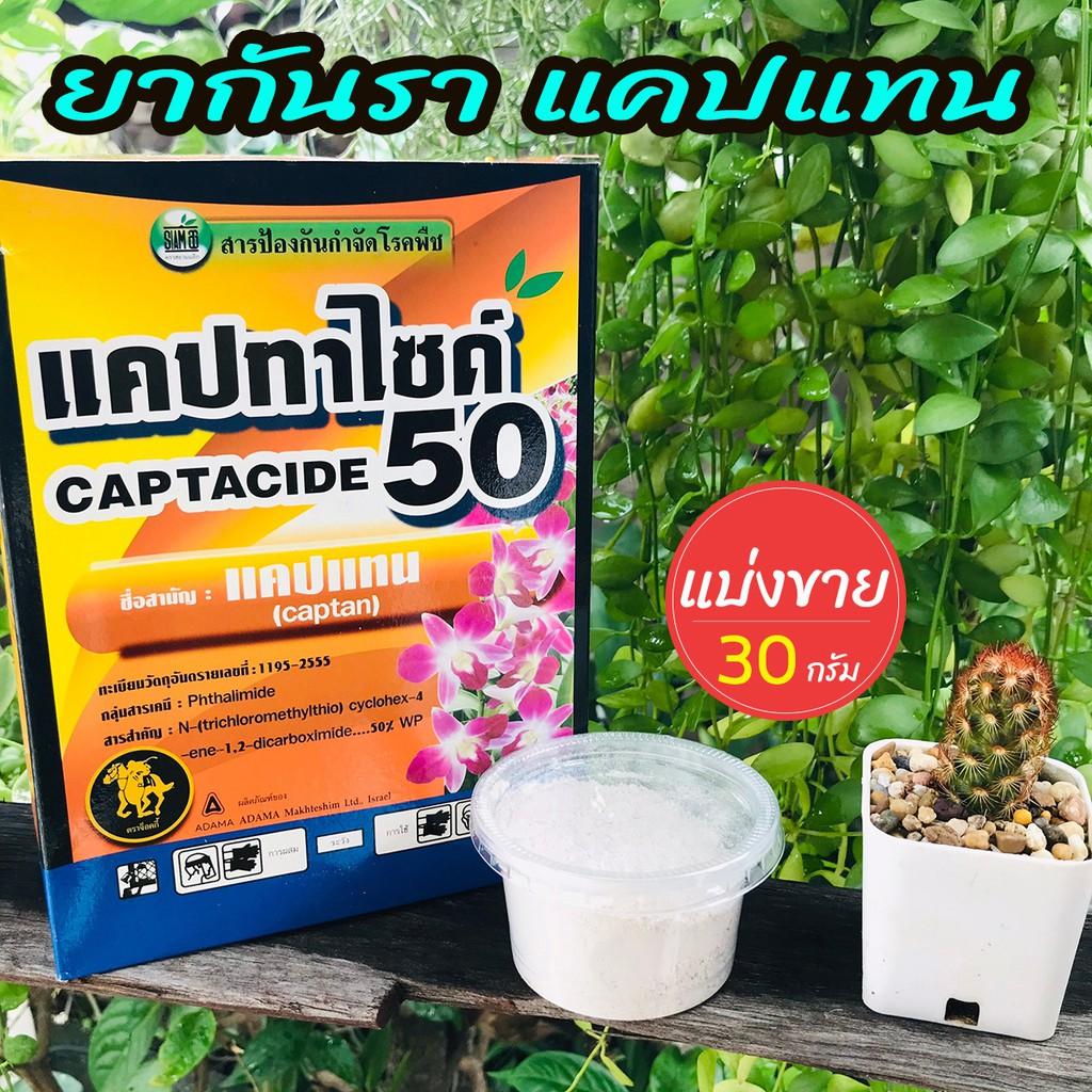 ยากันราแคปแทน (Captan - Captacide 50) ราในกระบองเพชร ไม้อวบน้ำ แคคตัส ไม้ประดับ ยาเพาะเมล็ด ฆ่าเชื้อราในดิน แบ่งขาย 30 g