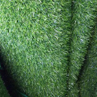 หญ้าสนามเนื้อท็อบB1×10m หญ้า2cmส่งฟรี