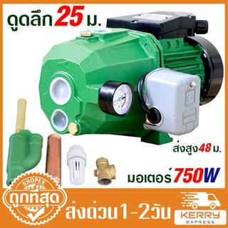 Delaman 12v DC Electric Diesel Kerosene Portable Transfer Pump Heavy Duty Vehicle Truck 40L//min