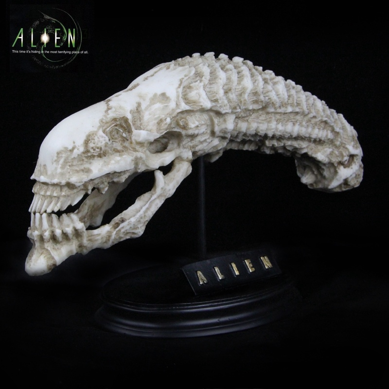 GARAGE KIT Alien 1/6 Scale  AVP Alien Xenomorph Queen Cranium Skull Colorful Mold Resin  Aniamtion Figure 25cm