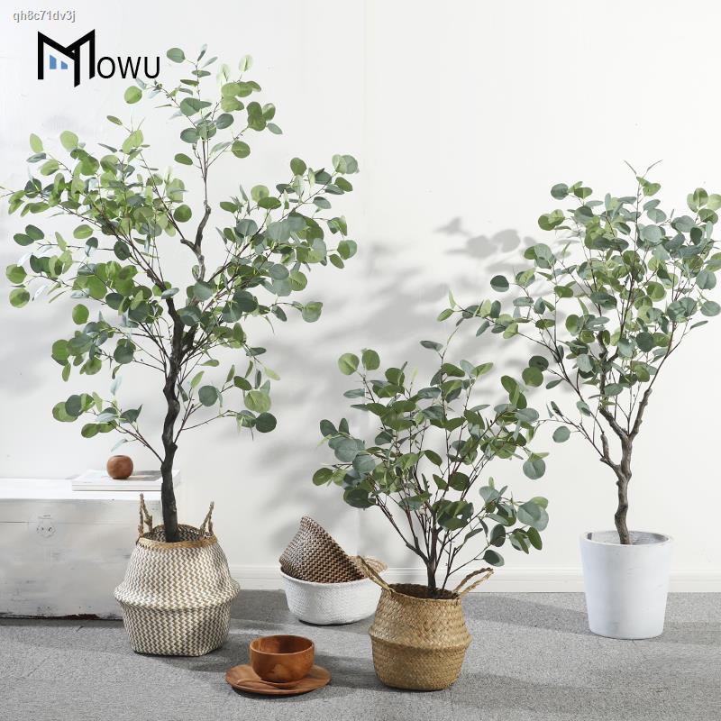 การจำลองพันธุ์ไม้อวบน้ำ✾☁◈Mo House Nordic ins wind eucalyptus tree จำลองพืช potted เครื่องประดับปลอมพืชสีเขียวห้องนั่งเล