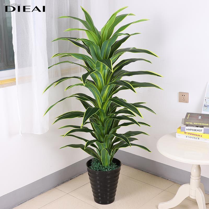 การจำลองพันธุ์ไม้อวบน้ำ◈พืชสีเขียวปลอม บราซิล ไม้ ห้องนั่งเล่น สำนักงาน ดอกไม้ปลอม กระถางต้นไม้ขนาดใหญ่ ตกแต่งกระถาง พลา