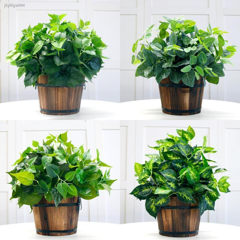 การจำลองพันธุ์ไม้อวบน้ำ▣¤พืชจำลอง ต้นไม้ปลอม พืชสีเขียว ถังไม้ตกแต่งในร่มและกลางแจ้ง กระถางต้นไม้ผักชีฝรั่งสีเขียวขนาดเล
