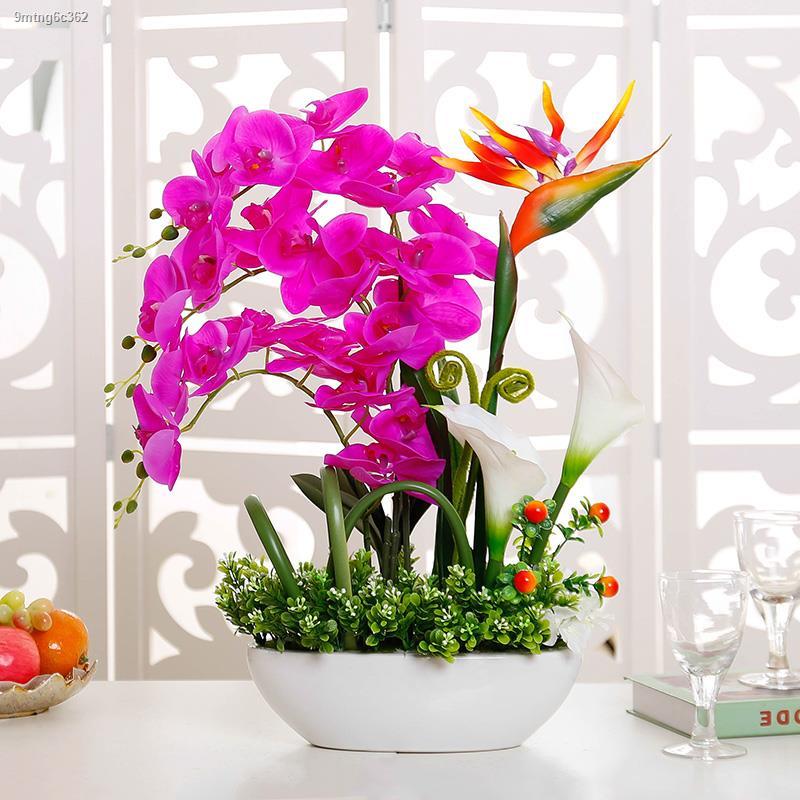 การจำลองพันธุ์ไม้อวบน้ำ▨☜▤ชุดดอกไม้จำลองนกสวรรค์ phalaenopsis ดอกไม้ตกแต่งห้องนั่งเล่นดอกไม้ประดิษฐ์รู้สึก PU ปลอม เครื่