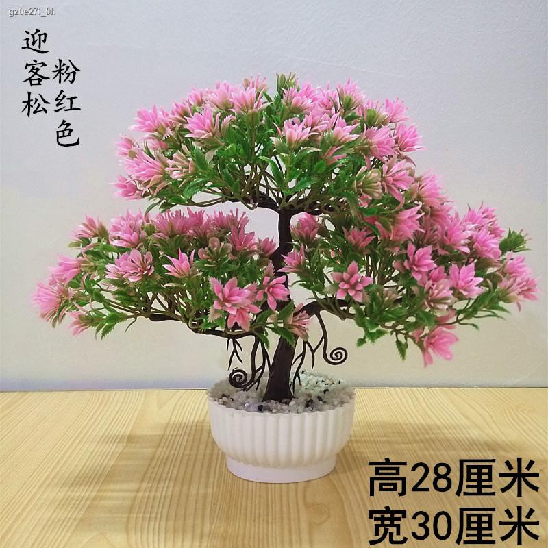 การจำลองพันธุ์ไม้อวบน้ำ♕กระถางต้นไม้จำลองดอกไม้ปลอมกระถางตั้งโต๊ะบอนไซขนาดเล็กตกแต่งห้องนั่งเล่น โต๊ะทำงานในห้องนอน โต๊ะ