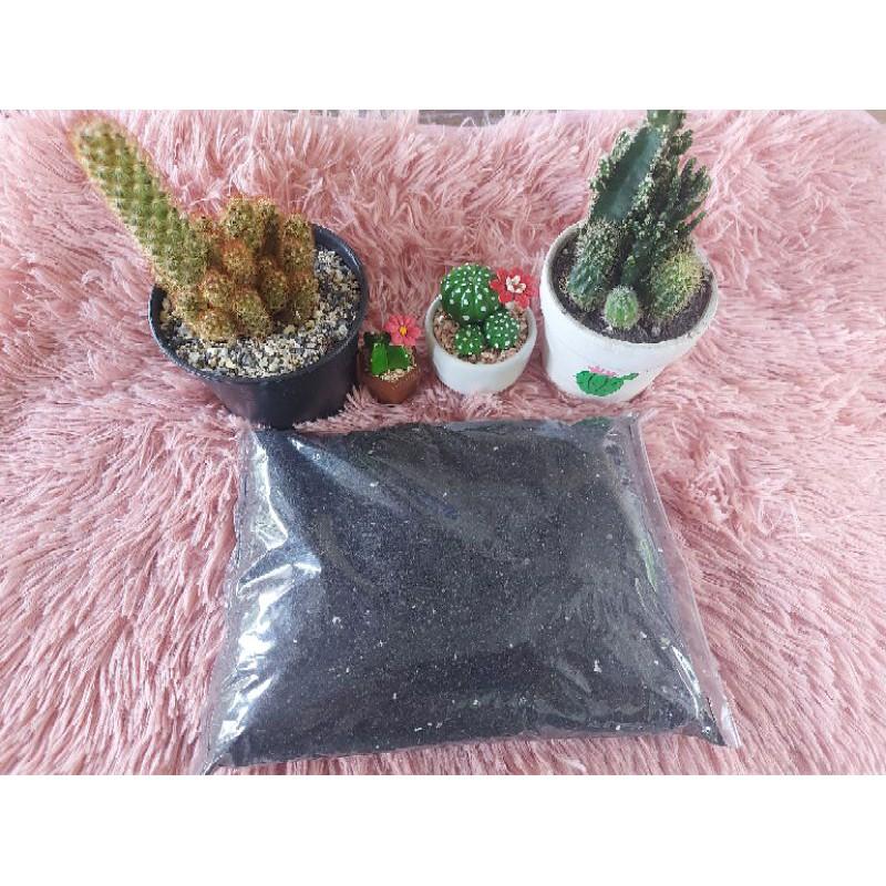 ดินผสมพร้อมปลูก ดินสำหรับปลูกไม้อวบน้ำ ดินสำหรับปลูกแคคคัส ดินปลูกต้นกระบองเพชร