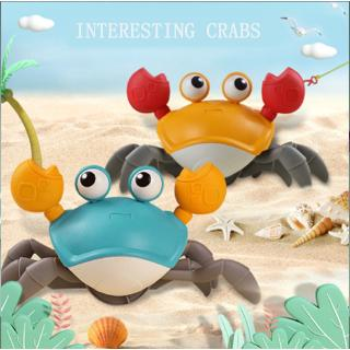 【In Stock】Creative Cute Water and Land Crabs Baby Bathrooms Swimming Children's Beach Towing Toys on the