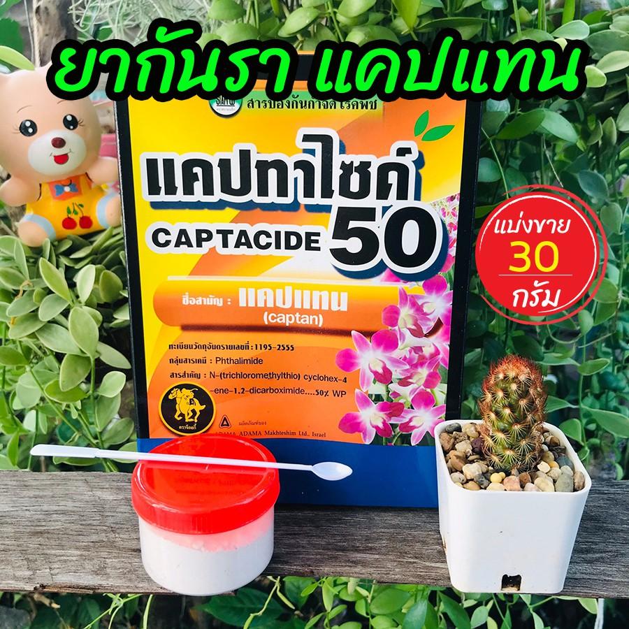 ยากันเชื้อราแคคตัส ยากันราแคปแทน (Captan - Captacide 50) ราในกระบองเพชร ไม้อวบน้ำ  ไม้ประดับ ยาเพาะเมล็ด แบ่งขาย 30 g